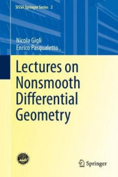 Lectures on Nonsmooth Differential Geometry av Nicola Gigli og Enrico Pasqualetto (Innbundet)