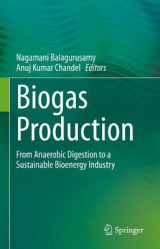 Omslag - Biogas Production