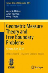 Omslag - Geometric Measure Theory and Free Boundary Problems