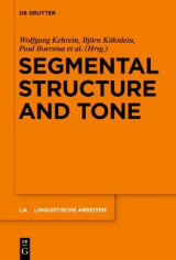 Omslag - Segmental Structure and Tone