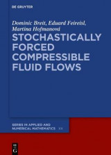 Omslag - Stochastically Forced Compressible Fluid Flows