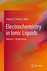 Omslag - Electrochemistry in Ionic Liquids 2015: Applications Volume 2