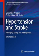 Omslag - Hypertension and Stroke 2017
