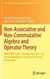 Omslag - Non Associative & Non Commutative Algebra and Operator Theory 2016