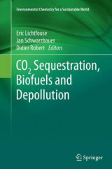 Omslag - CO2 Sequestration, Biofuels and Depollution