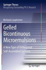 Omslag - Gelled Bicontinuous Microemulsions