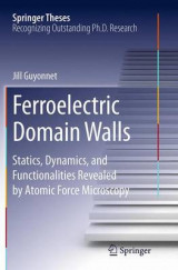 Omslag - Ferroelectric Domain Walls