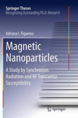 Omslag - Magnetic Nanoparticles
