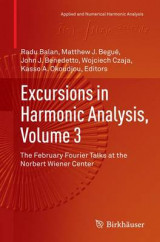 Omslag - Excursions in Harmonic Analysis, Volume 3