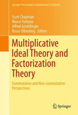 Omslag - Multiplicative Ideal Theory and Factorization Theory 2016