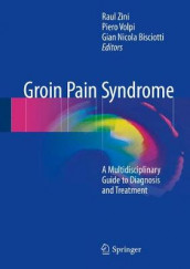 Groin Pain Syndrome (Innbundet)