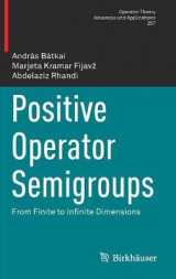 Omslag - Positive Operator Semigroups 2017