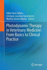 Omslag - Photodynamic Therapy in Veterinary Medicine: From Basics to Clinical Practice 2017