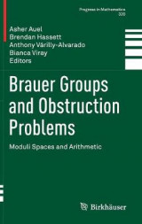Omslag - Brauer Groups and Obstruction Problems