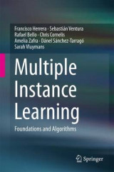 Omslag - Multiple Instance Learning
