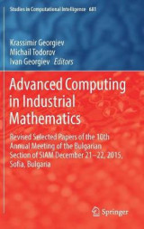 Omslag - Advanced Computing in Industrial Mathematics 2017