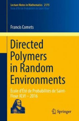Omslag - Directed Polymers in Random Environments 2016