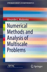 Omslag - Numerical Methods and Analysis of Multiscale Problems