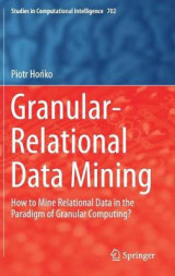Omslag - Granular-Relational Data Mining