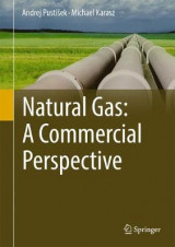Omslag - Natural Gas: A Commercial Perspective