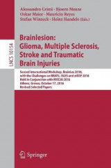 Omslag - Brainlesion: Glioma, Multiple Sclerosis, Stroke and Traumatic Brain Injuries