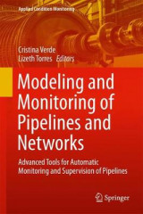 Omslag - Modeling and Monitoring of Pipelines and Networks