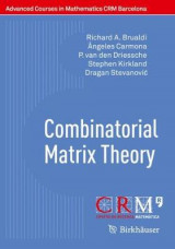 Omslag - Combinatorial Matrix Theory