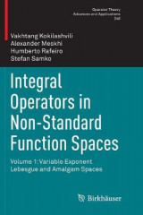 Omslag - Integral Operators in Non-Standard Function Spaces