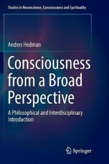 Consciousness from a Broad Perspective av Anders Hedman (Heftet)