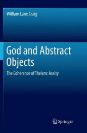 God and Abstract Objects av William Lane Craig (Heftet)