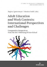 Omslag - Adult Education and Work Contexts: International Perspectives and Challenges