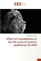 Effect of crowdedness in the life cycle of Lysenin studied by HS-AFM av Lopez de Blas Ignacio (Heftet)