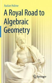 A Royal Road to Algebraic Geometry av Audun Holme (Innbundet)