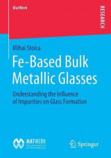 Omslag - Fe-Based Bulk Metallic Glasses