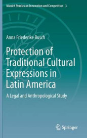 Protection of Traditional Cultural Expressions in Latin America av Anna Friederike Busch (Innbundet)
