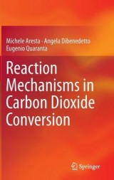 Omslag - Reaction Mechanisms in Carbon Dioxide Conversion 2016