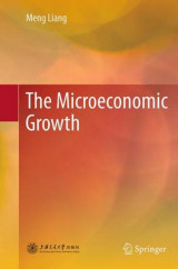 Omslag - The Microeconomic Growth