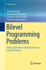Omslag - Bilevel Programming Problems