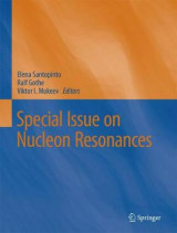 Omslag - Special Issue on Nucleon Resonances
