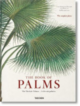 Omslag - Martius: The Book of Palms