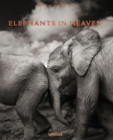 Omslag - Elephants in Heaven