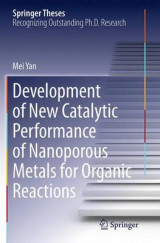 Omslag - Development of New Catalytic Performance of Nanoporous Metals for Organic Reactions