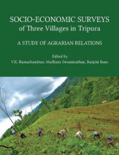 Socio-Economic Surveys of Three Villages in Trip - A Study of Agrarian Relations av Ranjini Basu, V K Ramachandran og Madhura Swaminathan (Innbundet)