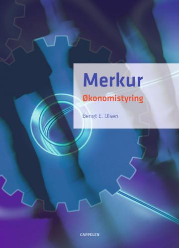 Bilde av Merkur Økonomistyring