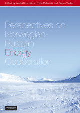 Omslag - Perspectives on Norwegian-Russian energy cooperation