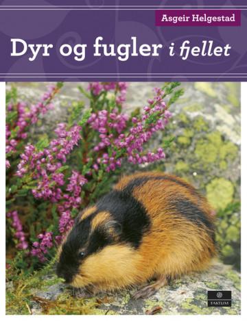 Bilde av Dyr Og Fugler I Fjellet