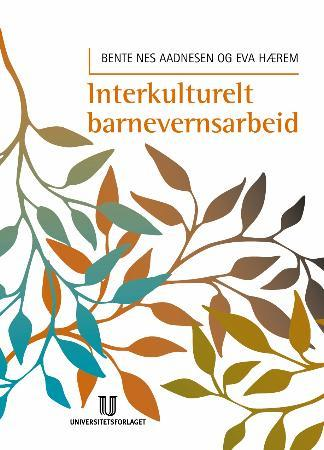 Bilde av Interkulturelt Barnevernsarbeid