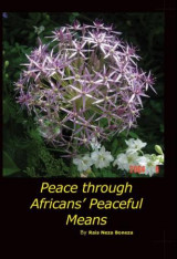 Omslag - Peace through Africans' peaceful means