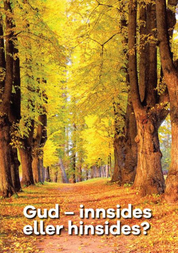 Bilde av Gud - Innsides Eller Hinsides?
