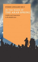 Omslag - In the wake of the Arab spring